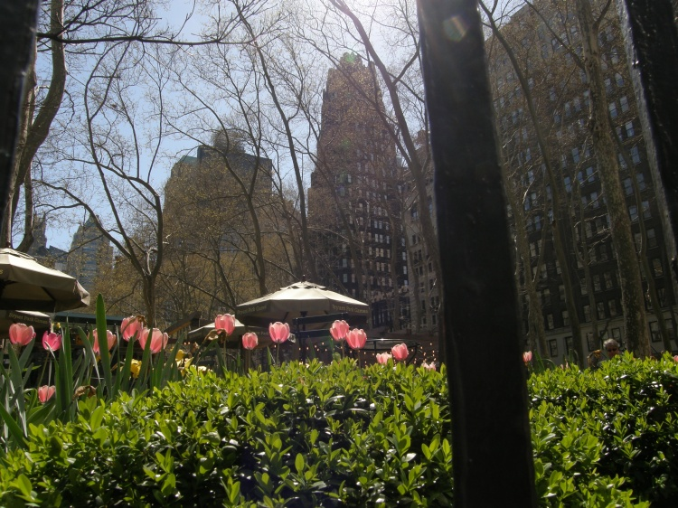 Madison Square Park, NYC